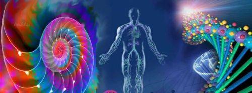 Imagen de biorresonancia cuántica