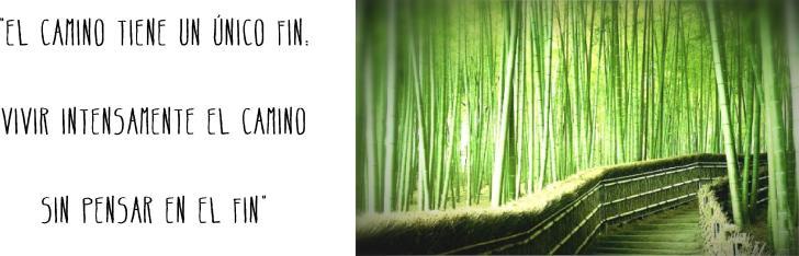 """Imagen de  """"Do: El Camino""""."""