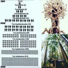 Grafico arbol genealogico hasta 1800