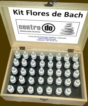 kit DE FLORES DE BACH